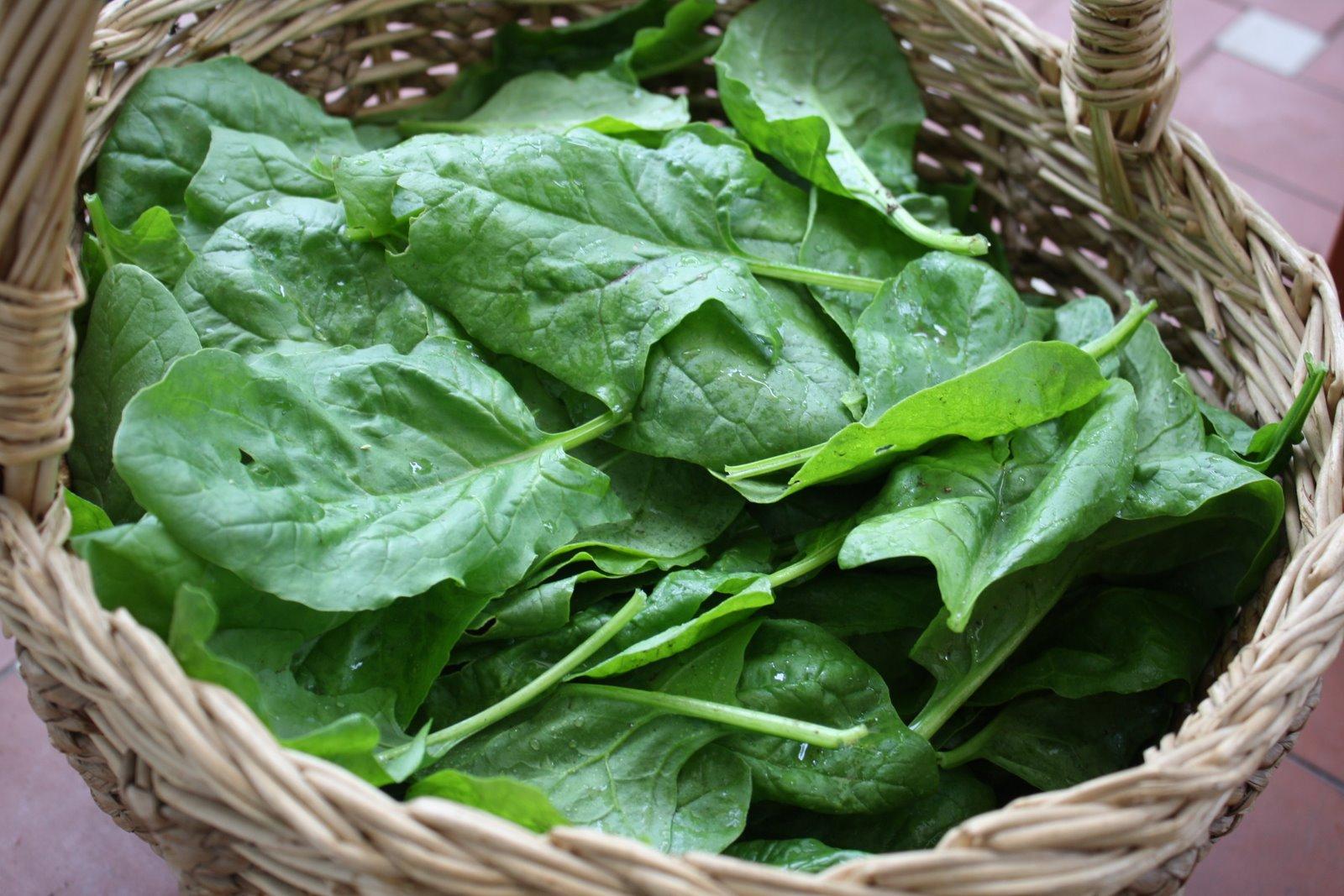 Sformato di patate e spinaci