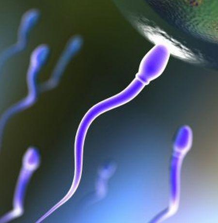 fertilità-celiachia