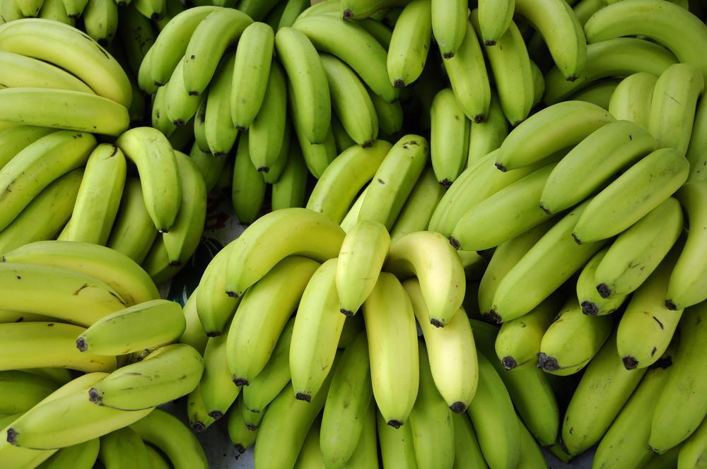 Gluten Free: arriva una nuova farina dalle banane verdi del Brasile