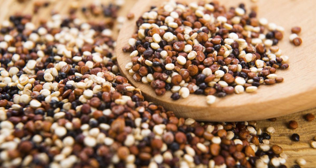Re-Cereal e pseudocereali: il futuro delle colture è sempre più senza glutine