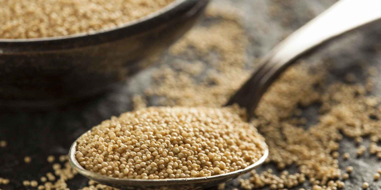 Amaranto, il grano degli dei