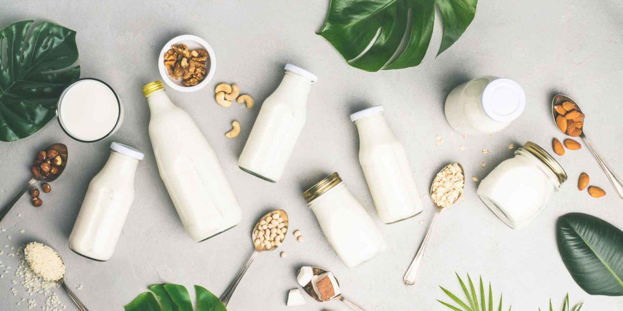 Bevande vegetali, una alternativa tutta da scoprire