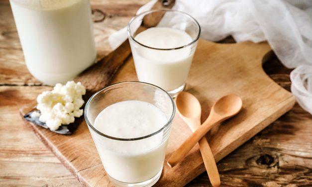 Kefir, lo yogurt che viene dal Caucaso: proprietà, benefici e qualche controindicazione
