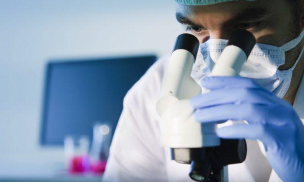Celiachia, scoperto il profilo degli anticorpi. Nello studio anche ricercatori di Unife