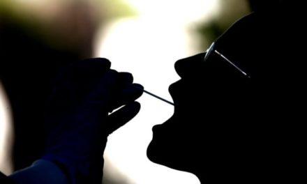 Da quello per la fertilità fino ad Aids, celiachia e propensione a sviluppare malattie o disturbi: i rischi dei test genetici fai-da-te