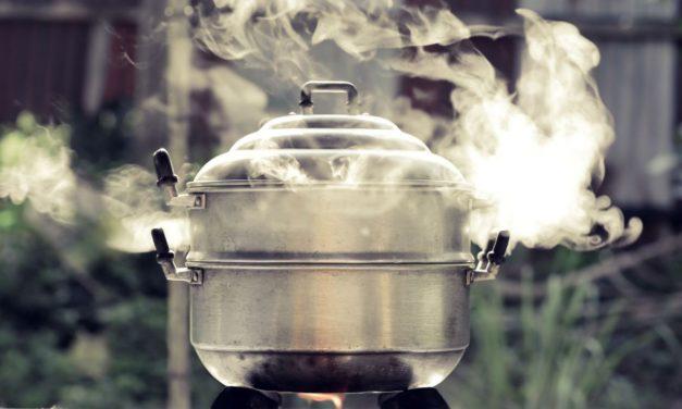 Oggi cucino al vapore, con gusto!