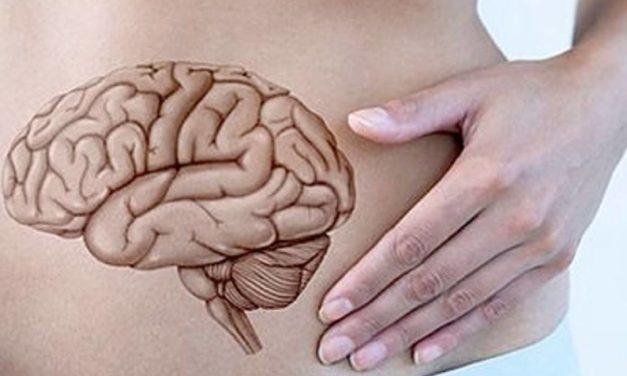 Sindrome del colon irritabile e celiachia: fare pace con l'intestino, secondo cervello