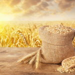 Forse non lo sai, ma la varietà di grano più diffusa in Italia è stata ottenuta con bombardamento di radiazioni