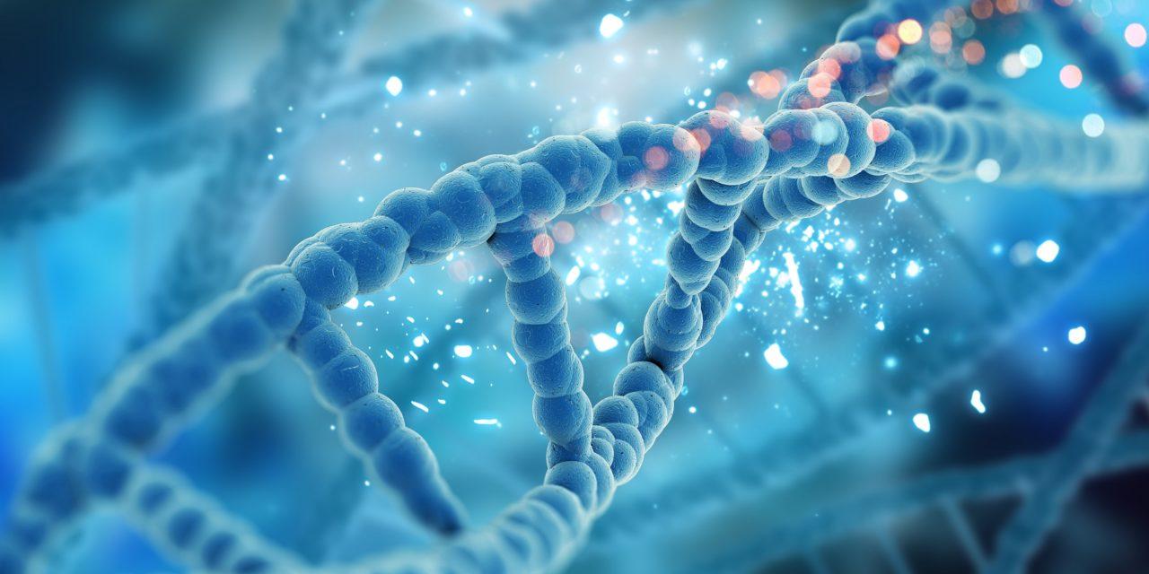 Celiachia: la causa è nei geni?